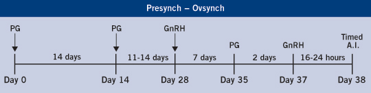 The Presynch - Ovsynch protocol found on the ABS Global website.