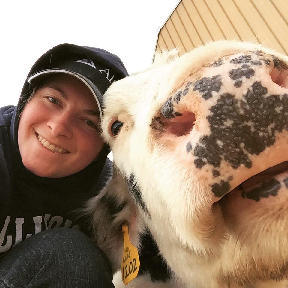 cow selfie